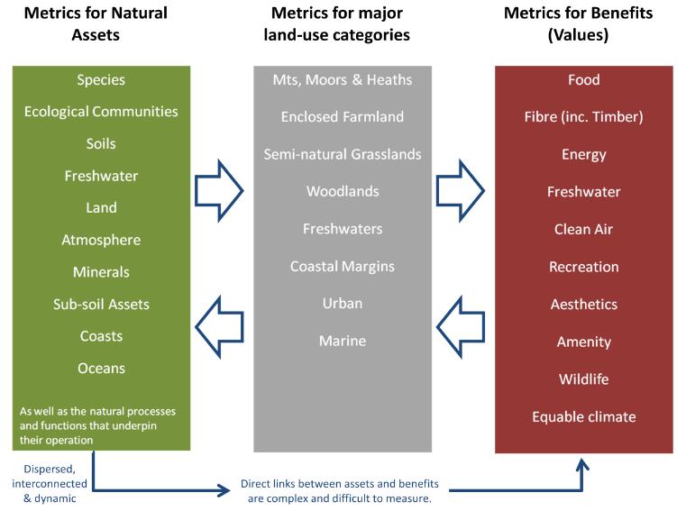 Natural Capital - 3 categories of metrics